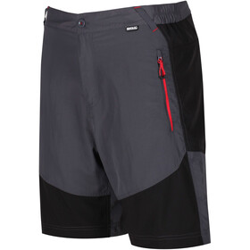 Regatta Sungari Shorts Herrer, seal grey/black